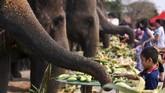 Gajah menjadi bagian dari sejarah Thailand. Setiap 13 Maret warga setempat memperingati Hari Gajah Nasional Thailand.