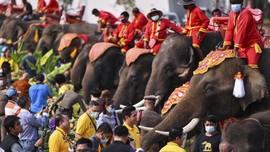 FOTO: Doa dan Penghormatan di Hari Gajah Nasional Thailand