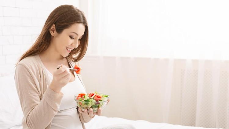 Ilustrasi makanan ibu hamil