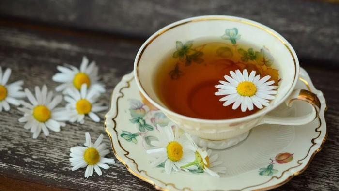Super Recommended! Jenis-jenis Teh Herbal yang Kaya Khasiat untuk Kesehatan