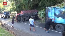 VIDEO: Truk Pengangkut Pangan Sapi Terguling di Tanjakan Cae