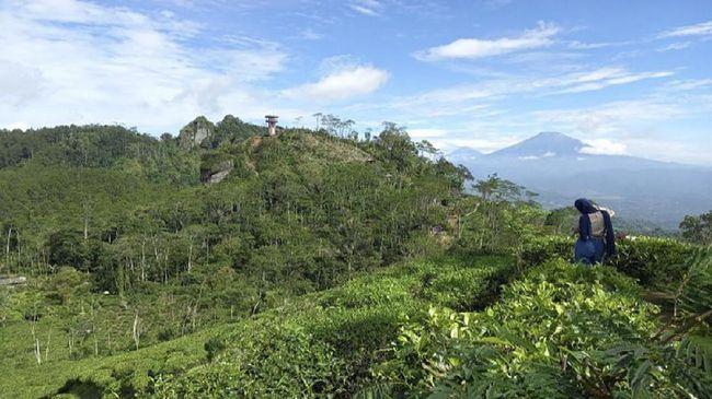 Sebagai respon dari larangan mudik pada Lebaran 2021 yang diterbitkan pemerintah pusat, pemerintah kabupaten Kulon Progo akan awasi kawasan perbatasan.