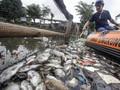 FOTO: Peringatan Hari Air Sedunia dan Bayang-bayang Krisis