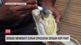 VIDEO: Sensasi Menikmati Durian Dipadukan dengan Kopi Pahit