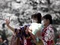 Pandemi Tak Batasi Penduduk Jepang Selfie dengan Sakura