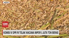 VIDEO: Komisi 4 DPR RI Tegas Tolak Wacana Impor Beras