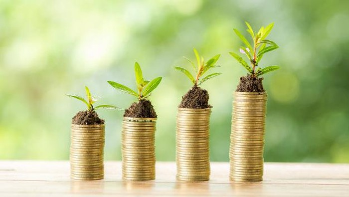 Ingin Investasi Tapi Modal Masih Pas-pasan? Masih Bisa, Kok! Ini Saran dari Ahli