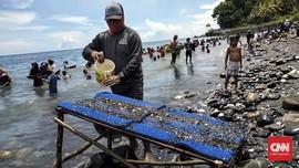 Ahli Ungkap Titik Potensi Emas di Sumatra, Jawa hingga Timur