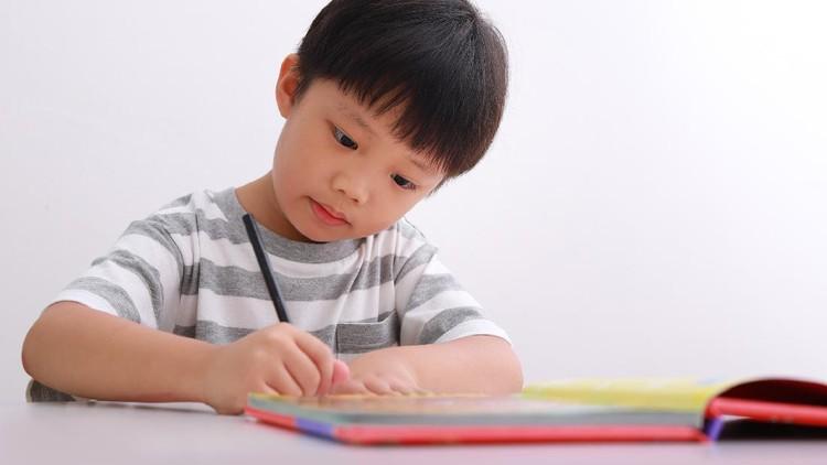 Portrait of little Asian boy sitting at his desk doing homework against white background.