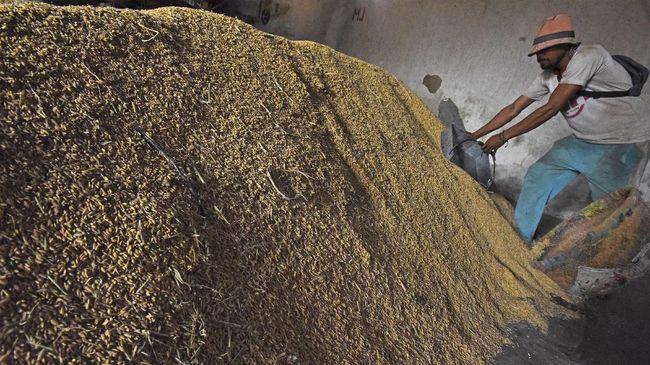 OJK akan memperbanyak pembentukan klaster pertanian untuk memudahkan petani mendapat Kredit Usaha Rakyat (KUR) sektor pertanian.