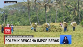 VIDEO: Polemik Rencana Impor Beras