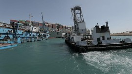 Terusan Suez, Isu Lingkungan dan Kehidupan Ikan yang Terancam