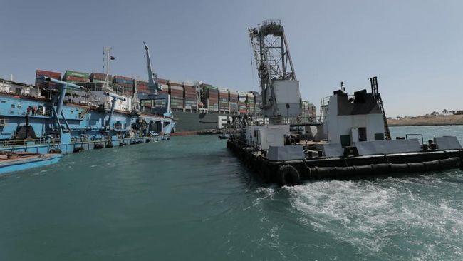 Terusan Suez menyebabkan banyak spesies hewan terancam dan menimbulkan masalah baru bagi lingkungan.