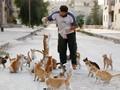 FOTO: Menyelamatkan Kucing yang Terluka Akibat Perang Suriah