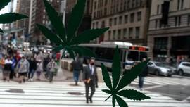 FOTO: Riang New York Rayakan Ganja Legal untuk Kesenangan