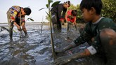 Samsudin (50), pria asal Indramayu, mendedikasikan hidupnya untuk turut serta melakukan konservasi hutan bakau atau mangrove lewat wayang dan mendongeng.
