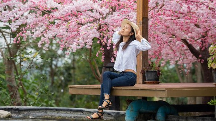 Khas Musim Semi, Berikut 5 Rekomendasi Parfum Aroma Bunga Sakura