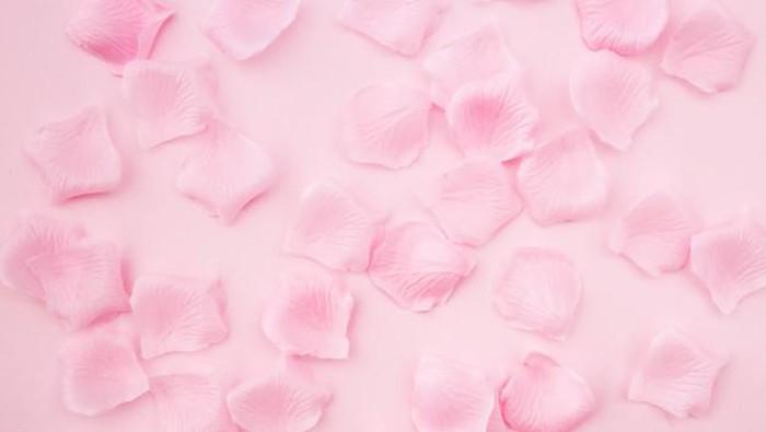 Alasan Mengapa Air Mawar Bagus untuk Kulit Wajah