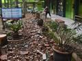 Cerita Warga Malang Saat Rumah Bergoyang Dihantam Gempa
