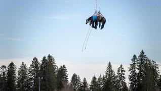 FOTO: Melihat Kuda Cidera Dievakuasi dengan Helikopter