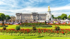 Taman Istana Buckingham Dibuka untuk Piknik Musim Panas