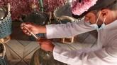 Panen Bunga Mawar Damascena (Damask) di kebun bunga Bin Salman, Taif, Arab Saudi, tahun ini bertepatan dengan bulan suci Ramadan.