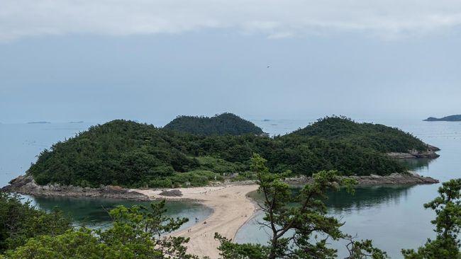 Satu tahun sekali, lautan di sekitar Pulau Jindo bakal terbelah dan memperlihatkan