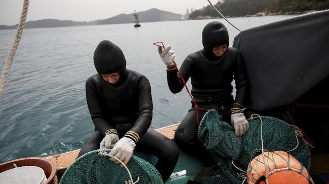 Haenyeo atau wanita penyelam di Korea menghadapi masalah serius. Pekerjaan dan kehidupan mereka nyaris terancam karena perubahan iklim dan polusi laut.