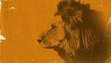 Kisah Hamzah bin Abdul Muthalib yang Dijuluki Singa Allah
