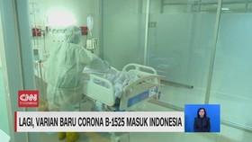 VIDEO: Lagi, Varian Baru Corona B-1525 Masuk Indonesia