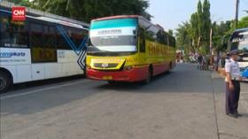VIDEO: Larangan Mudik, Sopir Bus AKAP: Lebaran Itu Cari Uang