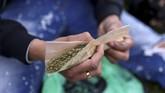 Setiap tahunnya, Hari Ganja Sedunia atau juga dikenal sebagai 420 Day diperingati setiap tanggal 20 April.