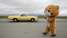 FOTO: 'Beruang' Jalan Kaki dari Los Angeles ke San Francisco