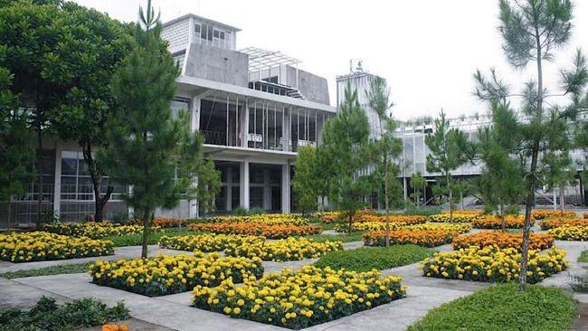 Rumah Atsiri bisa dikunjungi bagi yang ingin piknik di kebun sekaligus menambah wawasan soal asal muasal minyak atsiri yang mewangi.