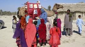 FOTO: Perpustakaan Unta, Penyelamat Anak Pakistan Era Pandemi