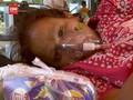VIDEO: Jeritan Pasien Covid-19 India di Tengah Oksigen Langka