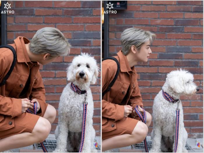 Bahkan cowok yang akrab disapa Nunu ini juga menikmati waktu pemotretan bersama seekor anak anjing super gemas / foto: fantagio entertainment
