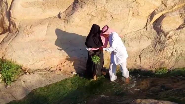 TKW Arab Saudi dan Jenderal Arab