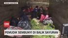 VIDEO: Beragam Trik Pemudik Hindari Penyekatan Petugas