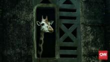 Kebun Binatang Ragunan Tutup Sementara