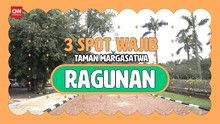 VIDEO: Wisata Virtual ke Tiga Spot Favorit di Ragunan