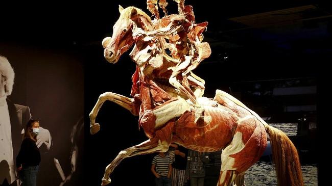 Ahli anatomi Jerman Gunther von Hagens memamerkan anatomi tubuh manusia yang terbuat dari plastik pada pameran