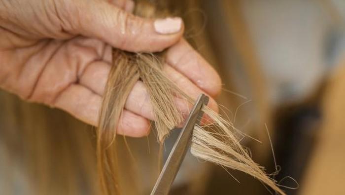 Kondisi Potong Rambut yang Haram Dilakukan Saat Ramadan