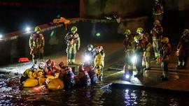 FOTO: Misi Evakuasi Paus Tombak Terdampar di Sungai Thames