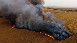 FOTO: Warga Palestina Gempur Israel dengan Balon Api