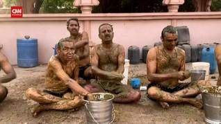 VIDEO: Ahli Bantah Khasiat Kotoran Sapi untuk Cegah Covid-19
