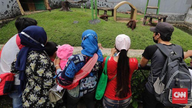 Kunjungan wisatawan di Kebun Binatang Bandung melonjak di hari terakhir libur Lebaran 2021, Minggu (16/5), sehingga memicu kerumunan di pintu gerbang.