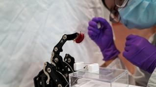 FOTO: Teknologi Penangkap Lalat Lewat Ponsel Pintar
