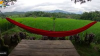 <p>Tampak ayunan merah menambah kenyamanan rumah, diikat di dua batang pohon di samping rumah. Kalau siang-siang bersantai di sini, pasti lelap banget buat tidur ya. (Foto: YouTube Petualangan Alam Desaku)</p>