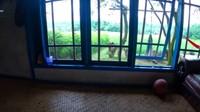 <p>Bagian dalam rumah juga enggak kalah sejuknya. Jendela besar membuat udara sejuk terasa hingga ke dalam. Untuk lantainya pun dipilih anyaman bambu yang menambah kesan alami rumah tersebut. (Foto: YouTube Petualangan Alam Desaku)</p>